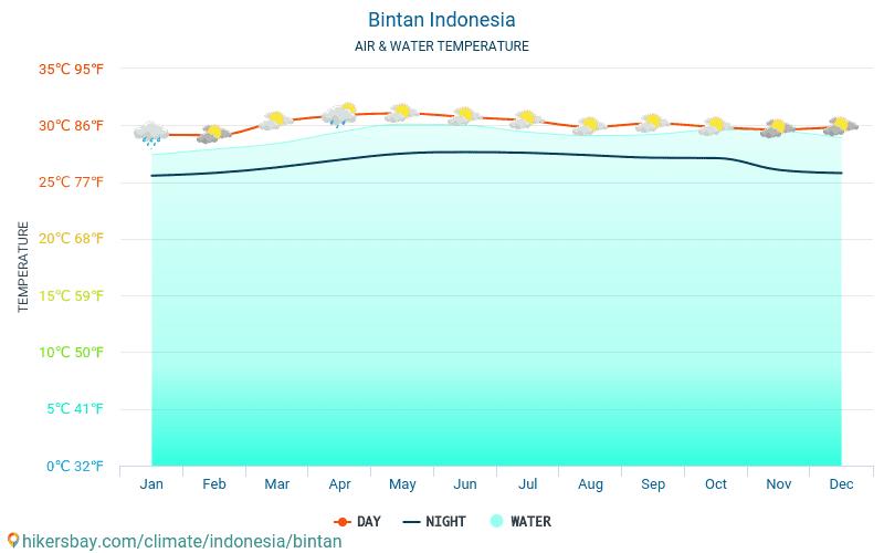 Bintan - Θερμοκρασία του νερού στη Bintan (Ινδονησία) - μηνιαίες θερμοκρασίες Θαλλασσών για ταξιδιώτες. 2015 - 2019