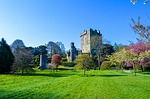 castle, blarney, ireland