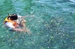 diving, scuba diving, krabi