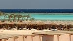 egypt, marsa alam, reef
