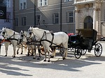 horses, horse drawn carriage, mold