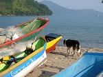 canoes, beach, dry bar