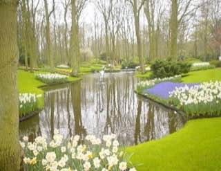 Keukenhof, netherlands , amsterdam