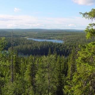 Riisitunturi National Park, finland , kuusamo