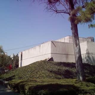 Museo Rufino Tamayo, Mexico City, mexico , mexicocity