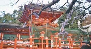 Kasuga-taisha, japan , osaka