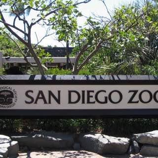 San Diego Zoo, usa , sandiego