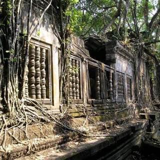 Beng Mealea, cambodia , siemreap