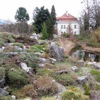 Botanical Garden of the University of Innsbruck, austria , tyrol