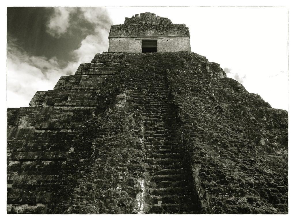 תמונה של Temple I ליד Tikal. stone sepia temple ancient pyramid maya guatemala mayan tikal rugged
