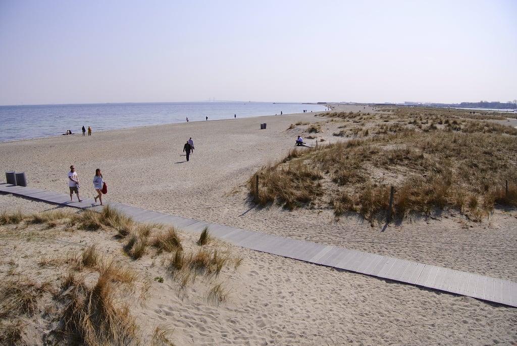 Image of Amager Strandpark.