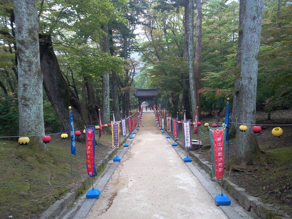 Εικόνα από Haeinsa. temple korea tempel haeinsa