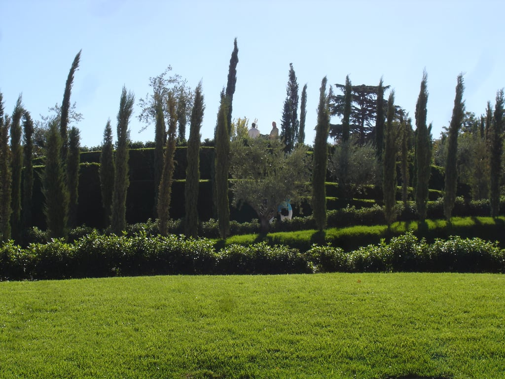 Afbeelding van Bosque del Recuerdo. madrid park parque españa spain recuerdo bosque terrorism retiro espagne 11m olivo terrorismo ausentes ciprés