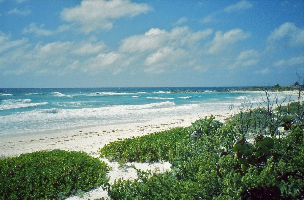 תמונה של Playa Ixpalbarco. mexico cozumel quintanaroo