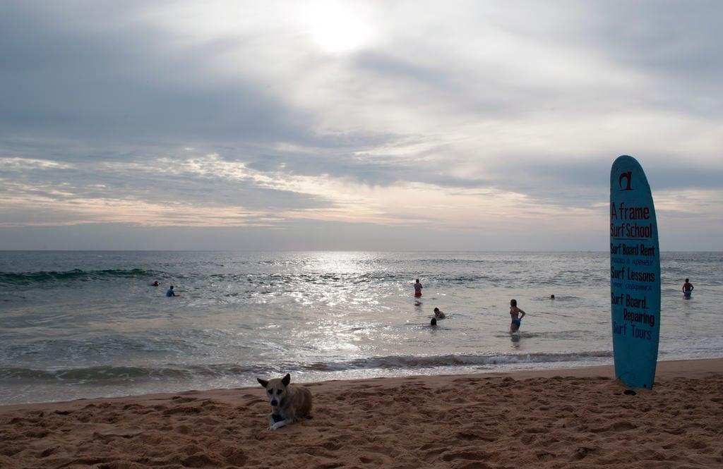 Εικόνα από Hikkaduwa beach. beach surfing surfschool srilanka ceylon hikkaduwa hikkaduwabeach aframesurfschool
