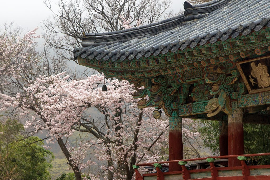 Εικόνα από Beomeosa. temple busan southkorea canon60d canonefs1585mmf3556isusm