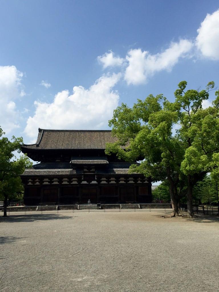 Billede af To-ji Temple.