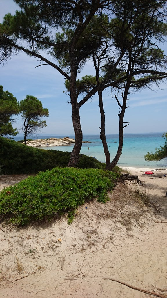 Εικόνα από Vourvourou Beach (Παραλία Βουρβουρούς) Karidi beach. club fun games greece poker paf grandlive clubpaftrip