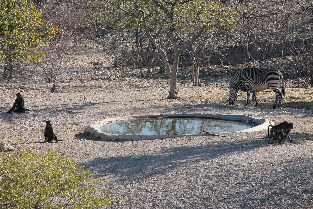 Attēls no Vingerklip. namibia africa vingerkliplodge vingerklip