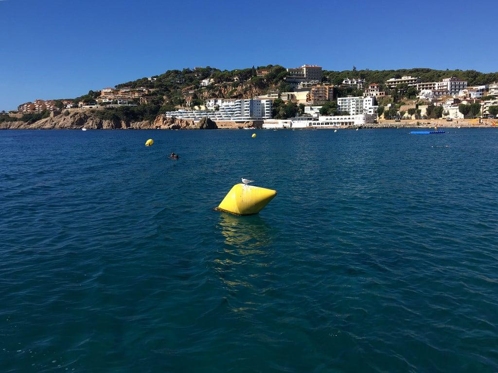 Platja de Sant Feliu 沙滩 的形象. costa brava spain catalonia mar mediterrània