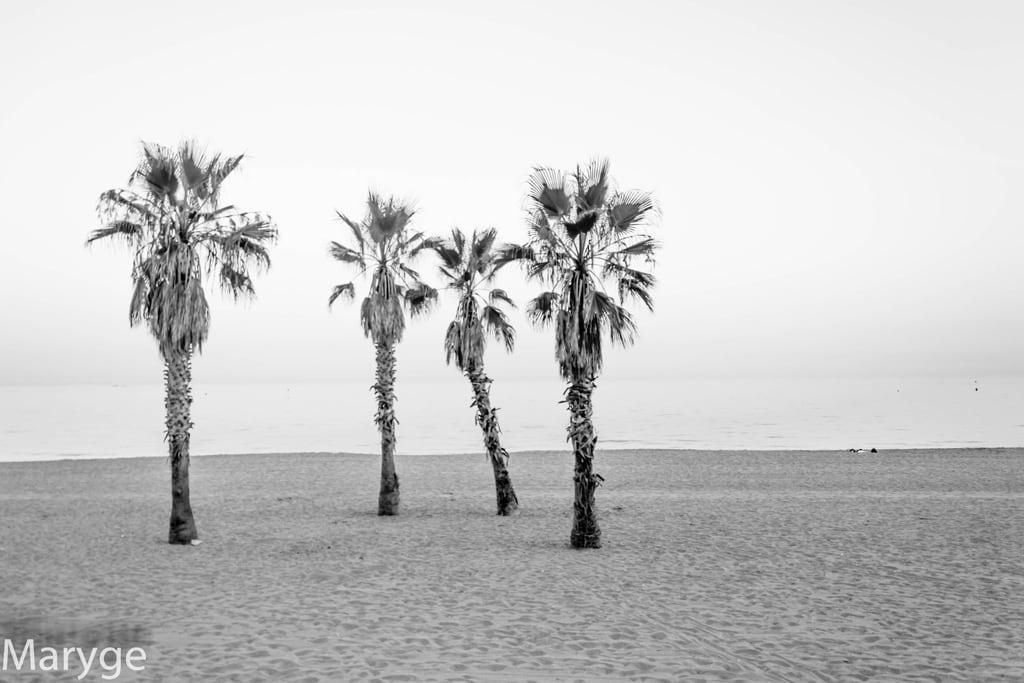 Kuva Playa de la Fontanilla.