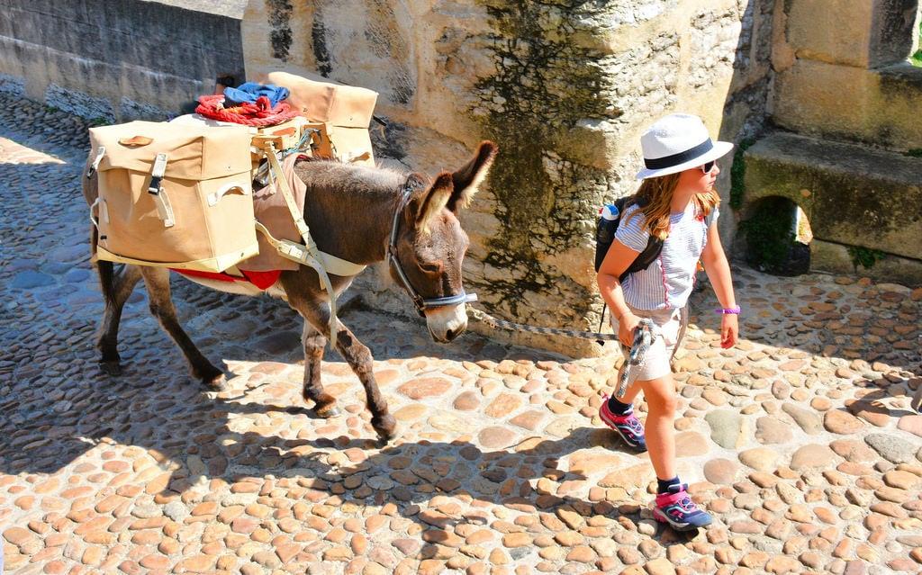 Image of Pont Valentré. pilgrim child donkey camino caminodesantiago pontvalentre cahors france bridge walker caminofrancés pilgrimage cute nikon d7100