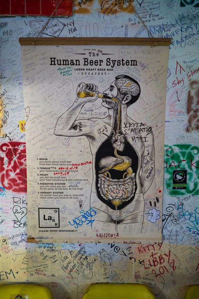 Kuva Szimpla Kert. budapest hungary hu sony sonya7riii sonyalpha nanpalmero beer anatomy