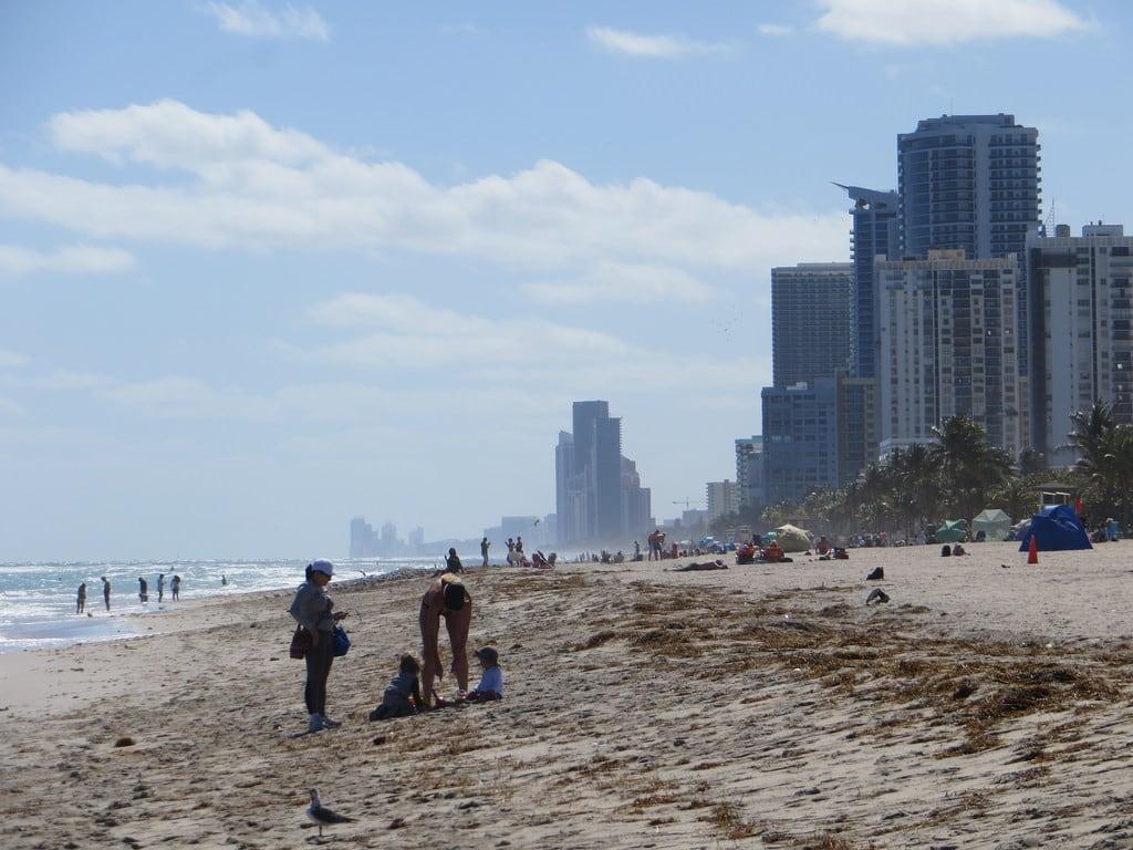 8280 미터의 길이와 해변 의 이미지. florida hollywoodbeach