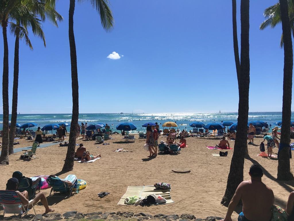 Bilde av Waikiki Beach. waikikibeach