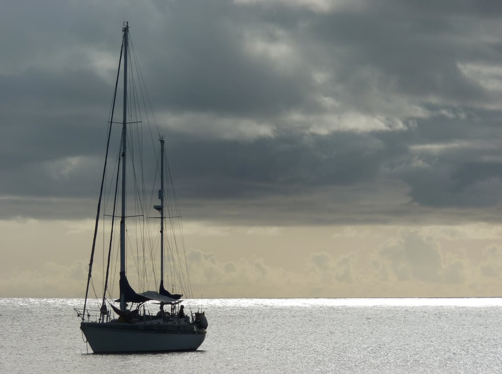 Mount Irvine Bay Beach 의 이미지. yacht tobago trinidadandtobago mtirvinebeach