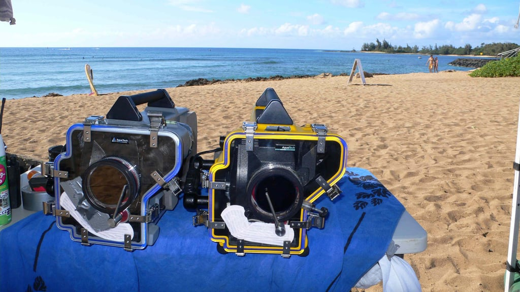 Secret Shelling Spot 海滩与 348 米的长度 的形象. camera usa cinema film beach 35mm hawaii cameras movies production haleiwa filmmaking hidef arri panavision motionpicture underwaterhousing aquatech appletv arriiii jaimansson