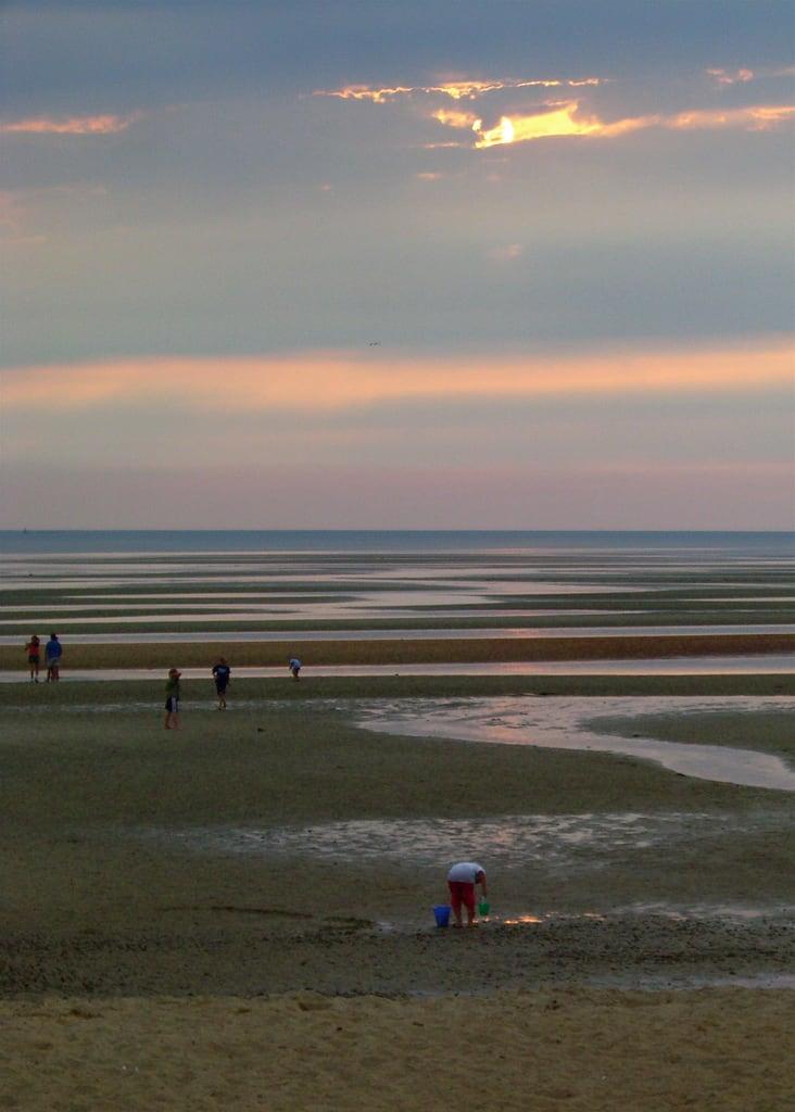 Bilde av First Encounter Beach. sunset beach capecod eastham firstencounterbeach