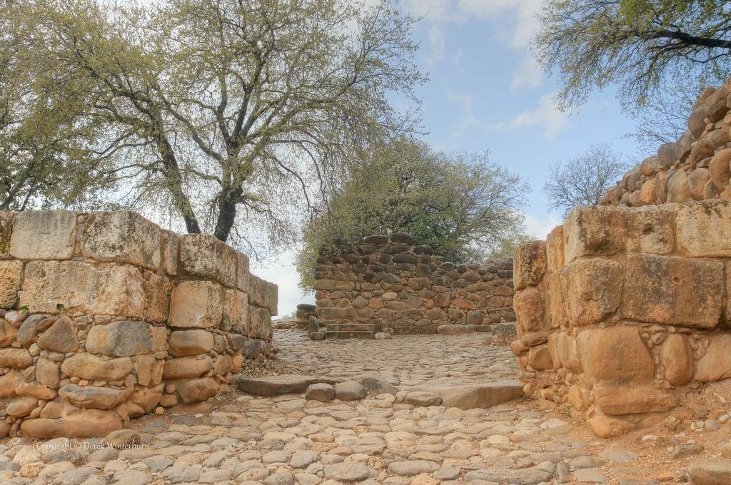 תמונה של תל דן. israel teldan northdistrict hagalilhaelyon
