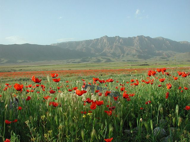 Best places to visit in Armenien