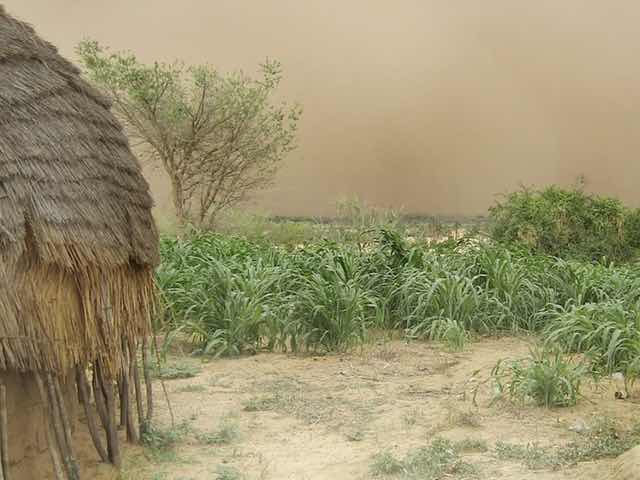 Best places to visit in Niger