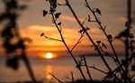 Zdjęcie:   Hiszpania  Baleary  Majorka  Cales de Mallorca  (sun, majorka, morze)