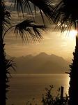 Zdjęcie:   Turcja  Riwiera Turecka  Beldibi  (palmami, morze, antalya)